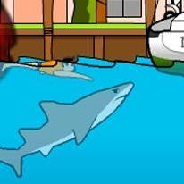 miami-shark